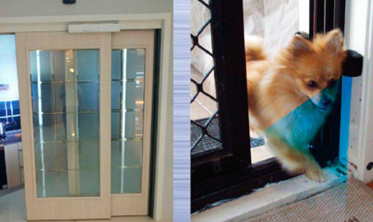 Residencial pet door (com sensor para animais de estimação)